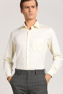dcd856b6bf3 Buy Peter England Men s Shirts-Peter England Shirts Online in India ...